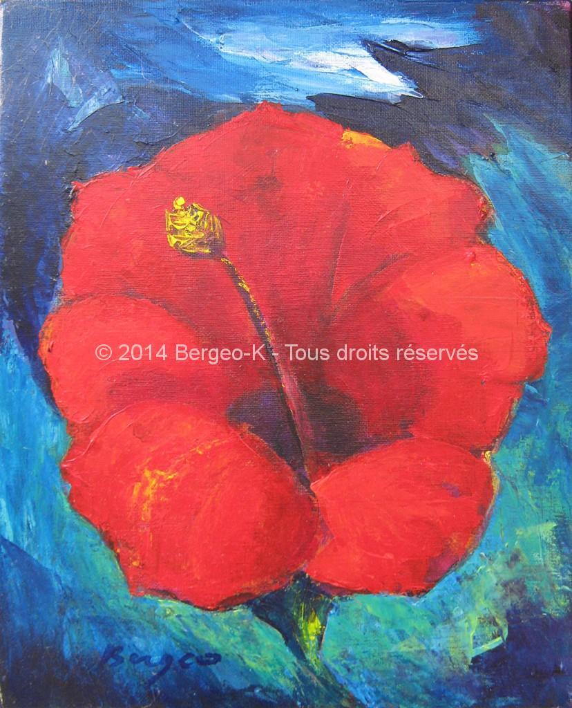 Hibiscus - 2005 - 5F